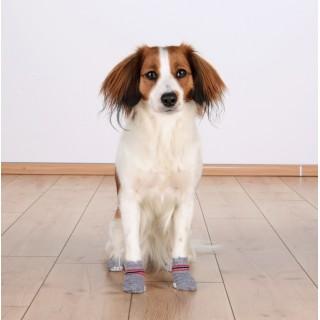 B.O.T. DOG RUGH STANDARD 89 cm