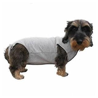 B.O.T. DOG RUGH STANDARD 55 cm