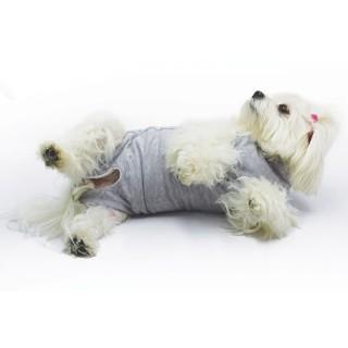 B.O.T. DOG RUGH STANDARD 40 cm