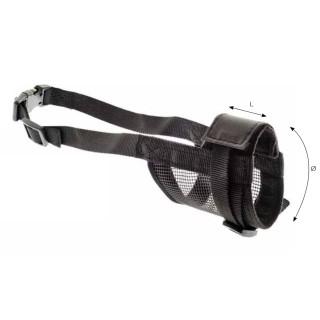 B.O.T. DOG RUGH STANDARD 37 cm